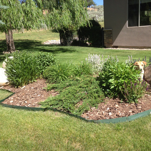 garden maintenance in Durango